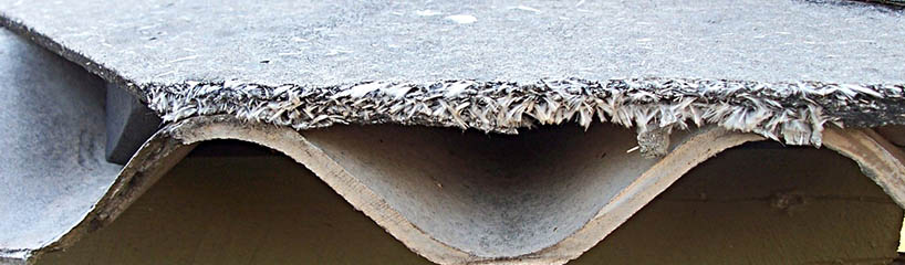 Asbestos Getting The Right Information Amp Training